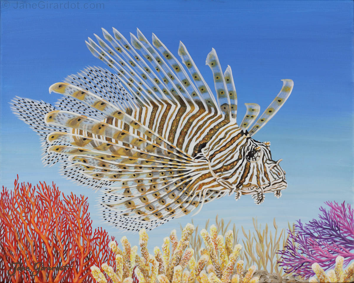 Lionfish and Coral - Jane Girardot Art