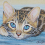 Bengal Kitten - Jane Girardot Art
