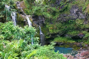 Waterfall Hana Maui01.jpg