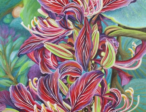 Full Blossom Orchid Tree