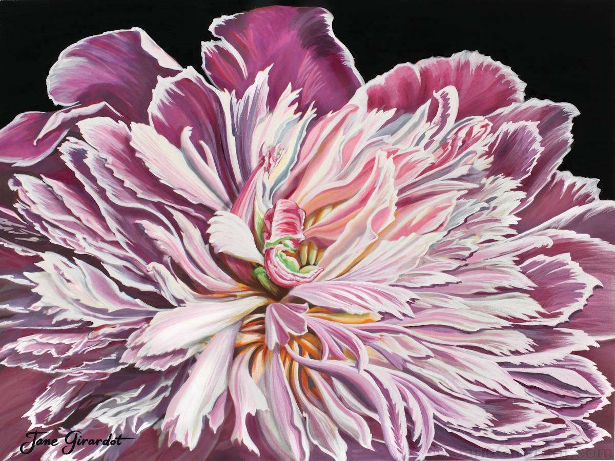 Pink Peony - Jane Girardot Art