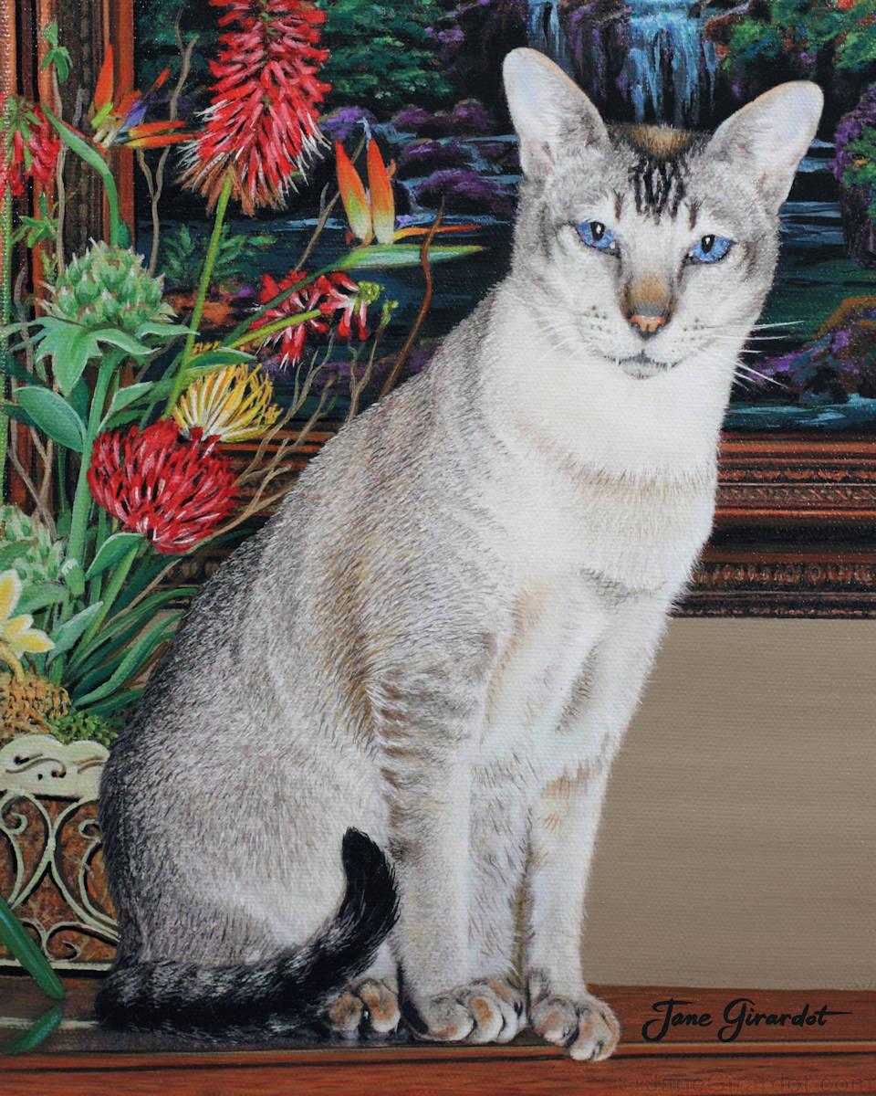 Tava - Jane Girardot Art