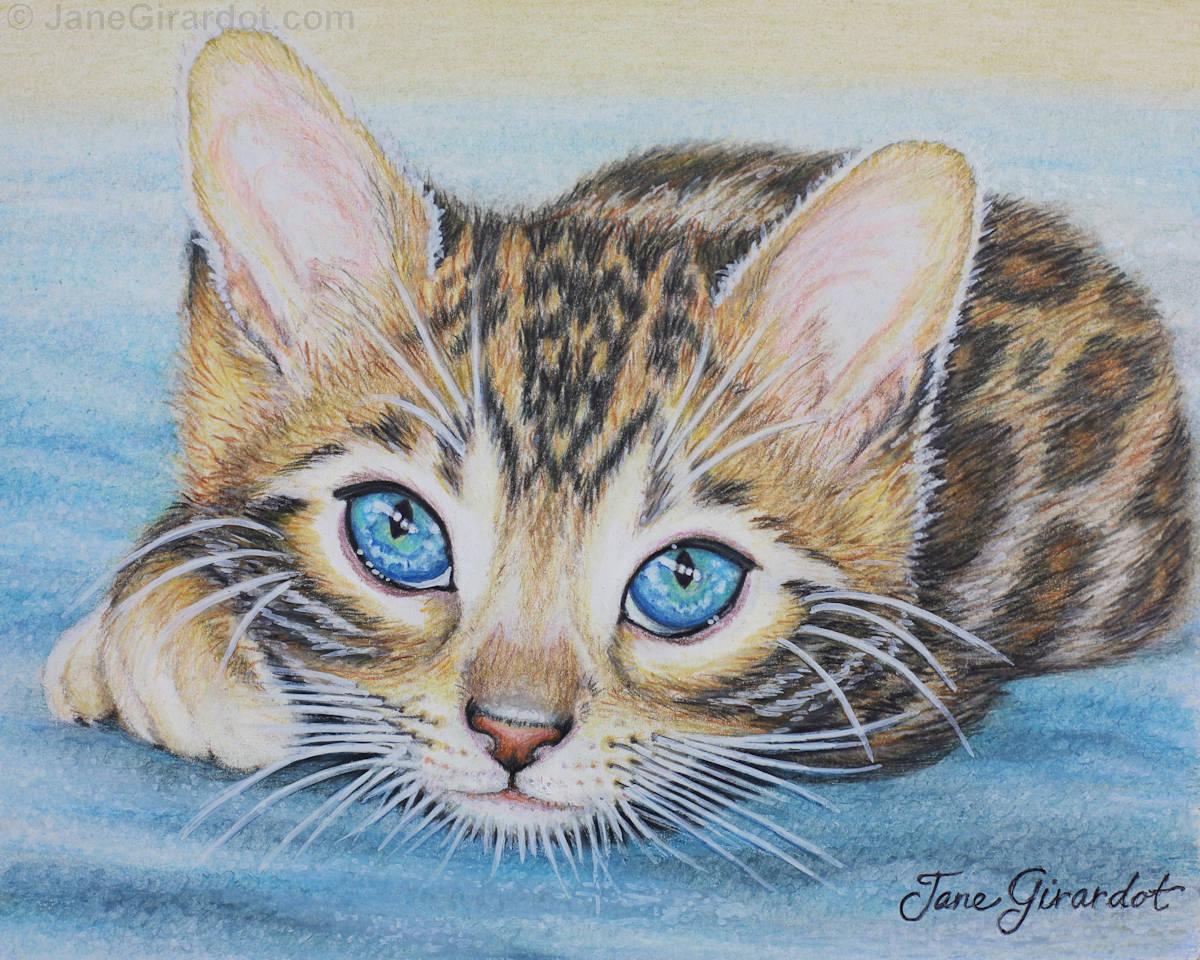 Bengal Kitten - Jane Girardot Art