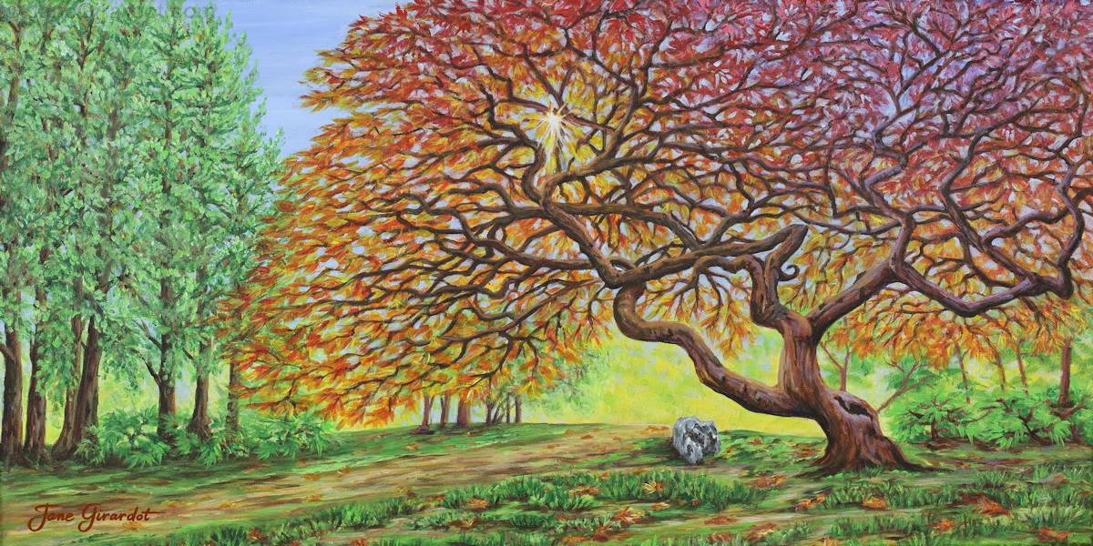 Japanese Maple - Jane Girardot Art