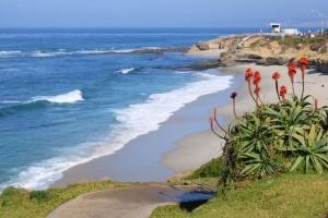 Beach La Jolla.jpg