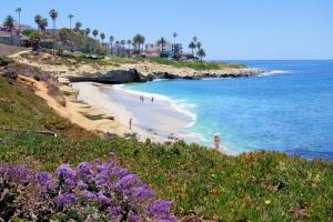 Coastline La Jolla02.jpg