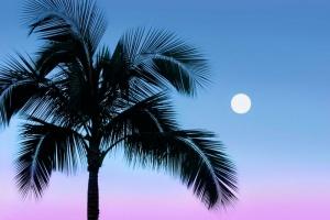 Moonrise Maui.jpg
