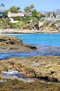 Shaws Cove Laguna.jpg