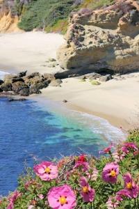 TI Beach Laguna02.jpg