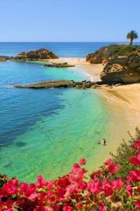 TI Beach Laguna05.jpg
