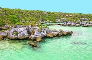 Xel-Ha Cancun.jpg